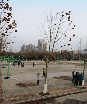 济宁医学院日照校区篮球架项目